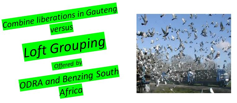 ODRA and Benzing South Africa